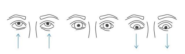Гимнастика и упражнения для глаз по Аветисову