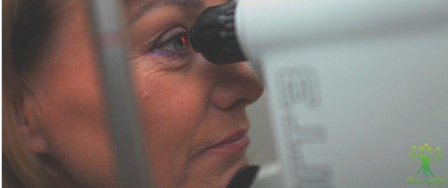 Золотой ус при катаракте, лечение золотым усом от катаракты