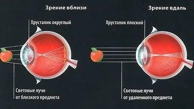 Аккомодация глаза: физиологические механизмы аккомодации глаза